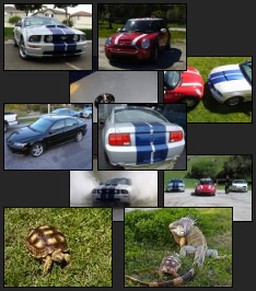 Car, Pet and Awesome Galleries